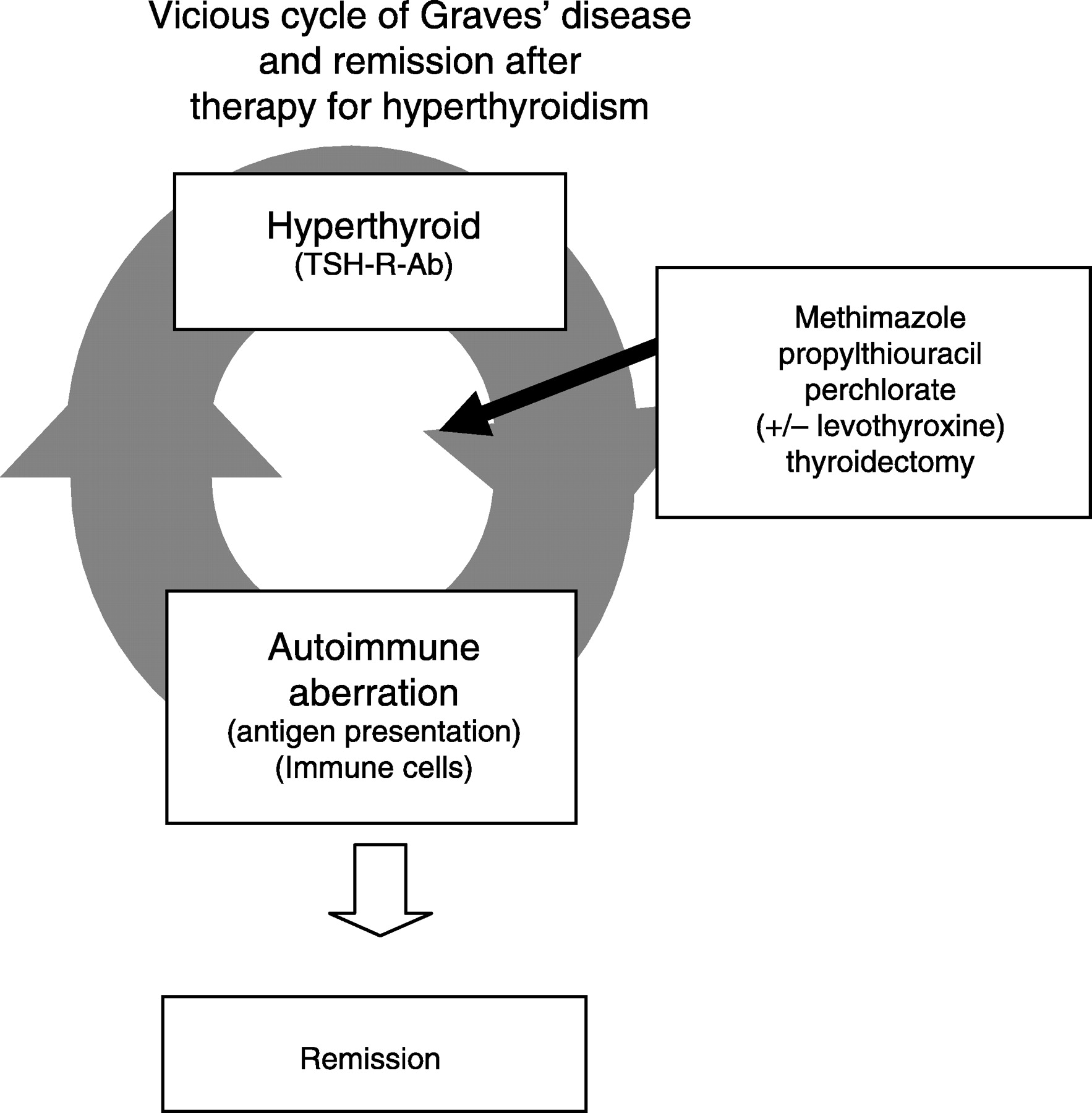 Remission Of Graves Disease During Anti Thyroid Drug Therapy Time To Reconsider The Mechanism In European Journal Of Endocrinology Volume 155 Issue 6 2006