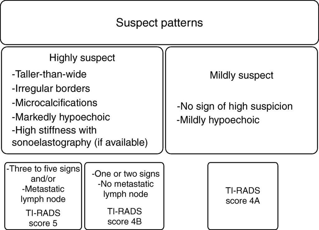 Prospective evaluation of thyroid imaging reporting and data