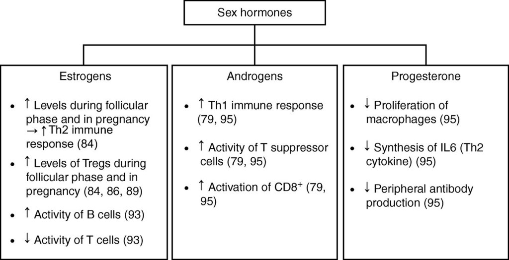 MECHANISMS IN ENDOCRINOLOGY: Thyroid and polycystic ovary syndrome in:  European Journal of Endocrinology Volume 172 Issue 1 (2015)