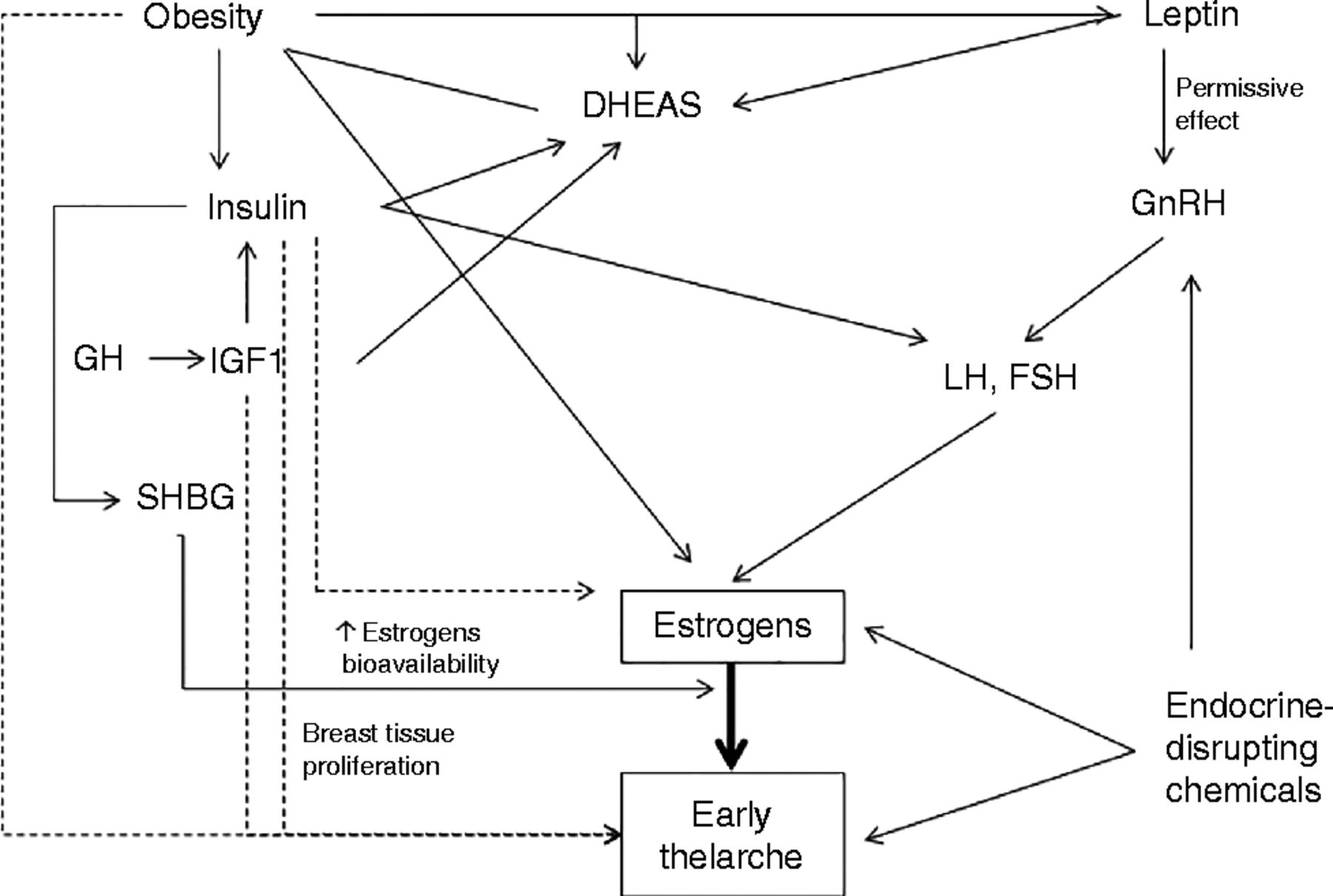 Ultrasensitive Estrogen Levels At 7 Years Of Age Predict Earlier