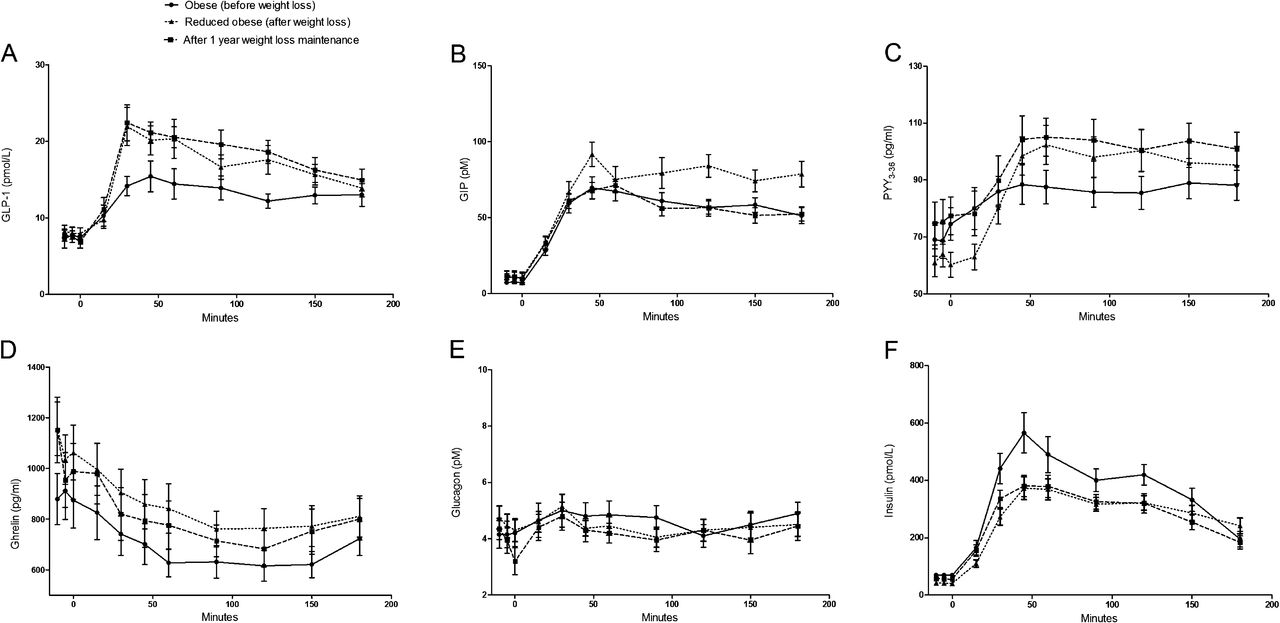 successful weight loss maintenance includes long term increased meal