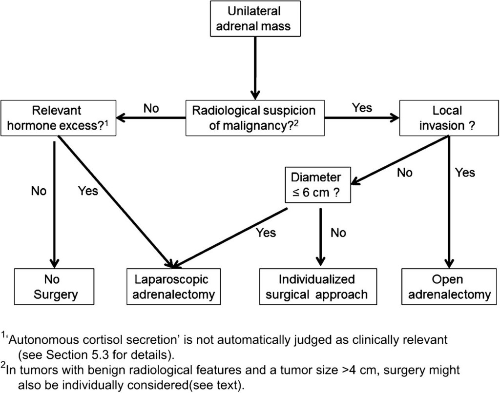 Management of adrenal incidentalomas: European Society of