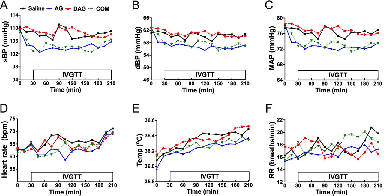 Acute administration of acyl, but not desacyl ghrelin