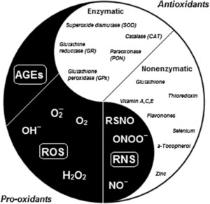 MECHANISMS IN ENDOCRINOLOGY: Nutrition as a mediator of